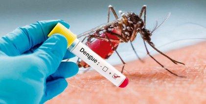 Tucumán sumó 344 nuevos casos de dengue durante el fín de semana