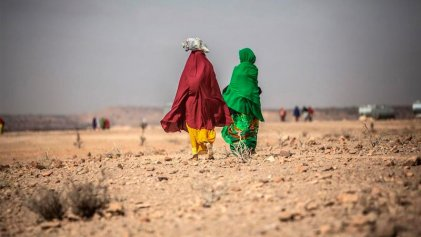 Más de 9 millones de personas en riesgo de hambre por sequía en sur de África