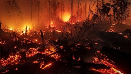 El planeta en llamas: 2019 con récord de incendios forestales y contaminación del aire