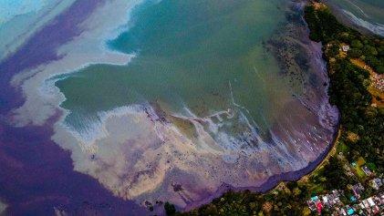 Desastre ecológico: mil toneladas de combustible derramadas en la isla Mauricio
