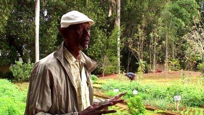 Agroecología en Cuba: una historia contada por sus protagonistas