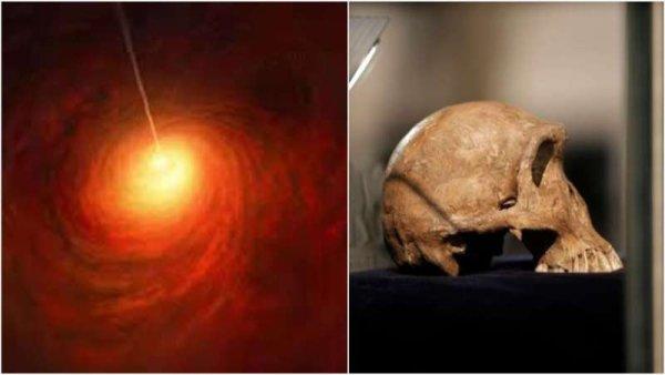 Dos episodios en la ciencia que estremecen al mundo